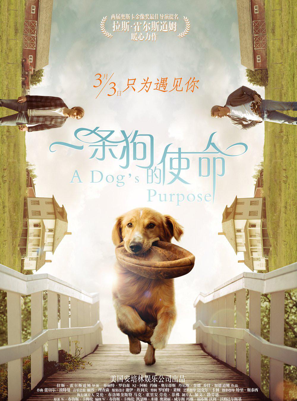 [2017年][剧情片][高清]一条狗的使命[1080P][中文字幕/3.46G]