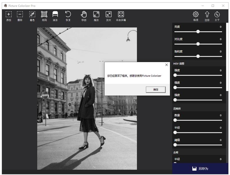 Picture Colorizer v2.4